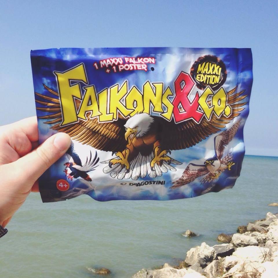 Arrivano dal cielo i Falkons&Co!